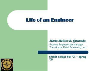 Life of an Engineer