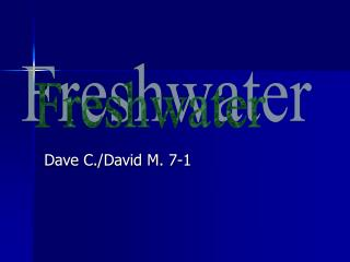 Dave C./David M. 7-1