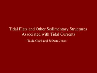 Tidal Flats and Other Sedimentary Structures  Associated with Tidal Currents