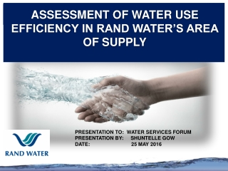 ASSESSMENT OF WATER USE EFFICIENCY IN RAND WATER'S AREA OF SUPPLY