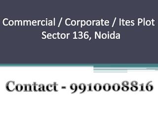 for sale 2000 sq mtr corporate plot noida 9910008816