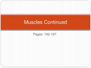 Muscles Continued