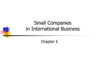 Small Companies in International Business