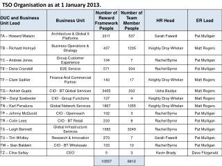 TSO Organisation as at 1 January 2013.