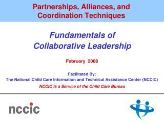 Partnerships, Alliances, and Coordination Techniques