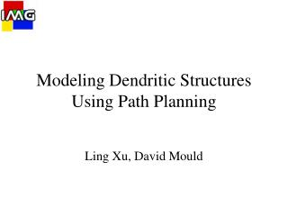 Modeling Dendritic Structures Using Path Planning