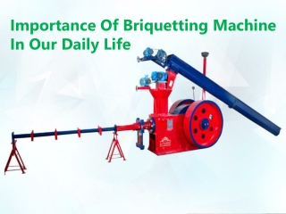 Importance Of Briquetting Machine In Our Daily Life