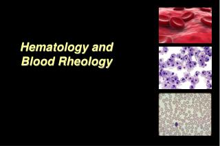 Hematology and Blood Rheology