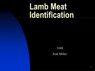 Lamb Meat Identification