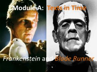 Module A: Texts in Time