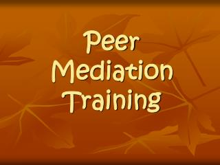 Peer Mediation Training