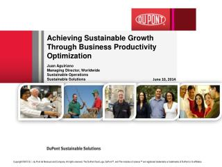 Achieving Sustainable Growth  Through Business Productivity Optimization