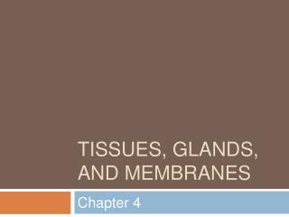 Tissues, glands, and membranes