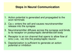 Steps in Neural Communication