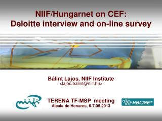 NIIF/Hungarnet on CEF: Deloitte  interview and on-line survey
