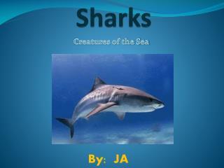 ppt - great white shark powerpoint presentation - id:1926407, Modern powerpoint