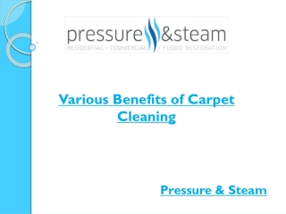 Various Benefits of Carpet Cleaning