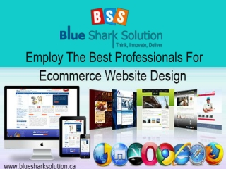 Employ the best professionals for ecommerce website design: