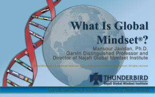 What Is Global  Mindset ® ?
