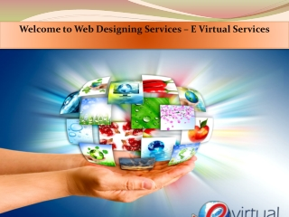Affordable Web Designing Services