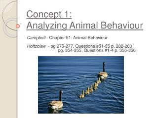 Concept 1:  Analyzing Animal Behaviour