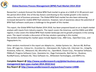 2018 Global Business Process Management PaaS Market Analysis