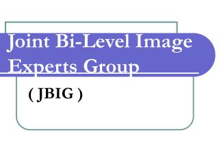 Joint Bi-Level Image Experts Group