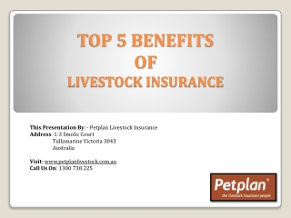 Top 5 Benefits Of Livestock Insurance