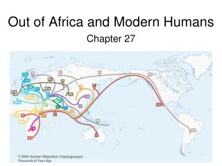 Out of Africa and Modern Humans