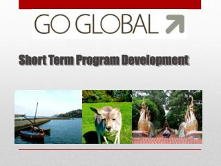 Short Term Program Development