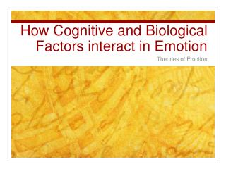 How Cognitive and Biological Factors interact in Emotion