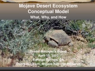 Mojave Desert Ecosystem Conceptual Model What, Why, and How