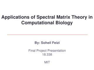 By: Soheil Feizi Final Project Presentation 18.338 MIT