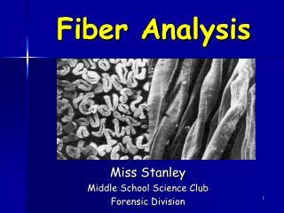 Fiber Analysis
