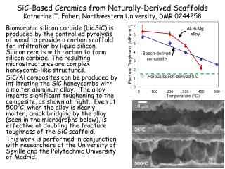 SiC-Based Ceramics from Naturally-Derived Scaffolds Katherine T. Faber, Northwestern University, DMR 0244258