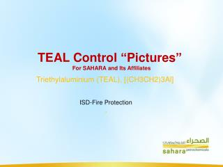 "TEAL Control ""Pictures""  For SAHARA and Its Affiliates"