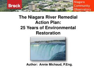 The Niagara River Remedial Action Plan: 25 Years of Environmental Restoration