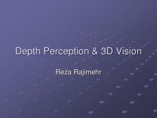 Depth Perception & 3D Vision