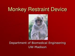 Monkey Restraint Device