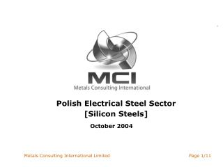 Polish Electrical Steel Sector [Silicon Steels]