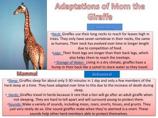 Adaptations of Mom the Giraffe