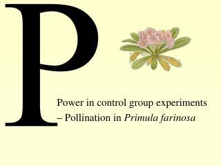 Power in control group experiments – Pollination in Primula farinosa