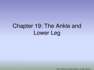Chapter 19: The Ankle and Lower Leg