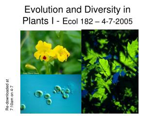 Evolution and Diversity in Plants I -  E col 182 – 4-7-2005