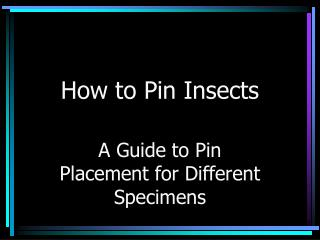 How to Pin Insects