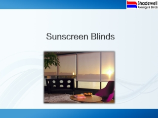 Best Sunscreen Blind For Windows