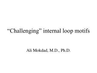"""Challenging"" internal loop motifs"