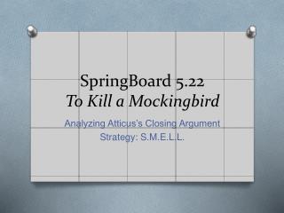 SpringBoard 5.22 To Kill a Mockingbird