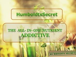HumboldtsSecret Golden Tree Nutrient