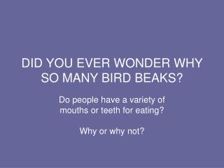 DID YOU EVER WONDER WHY SO MANY BIRD BEAKS?